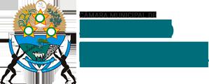 Câmara Municipal de São João D'Aliança